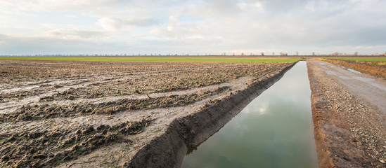 Newly dug ditch in a polder