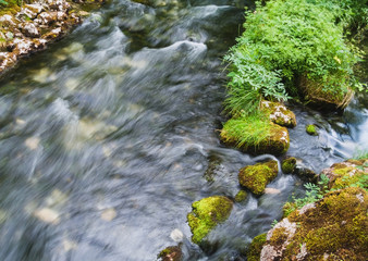 Beautiful Alpine brook with fresh green moss on the stones