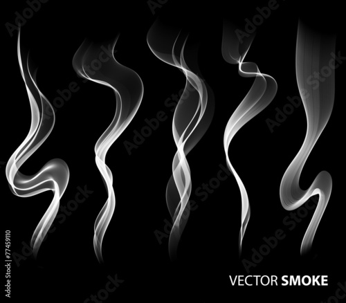 Set of Vector realistic smoke on black background - 77459110