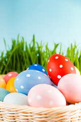Easter eggs in basket on meadow