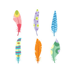 Vector colored feathers set. Bird feathers painted in colorful