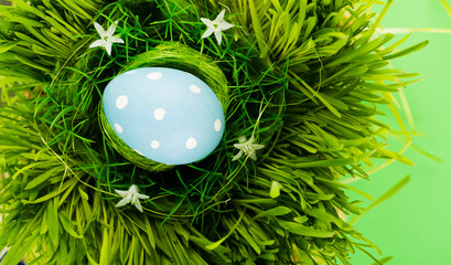Colorful easter egg in nest on meadow