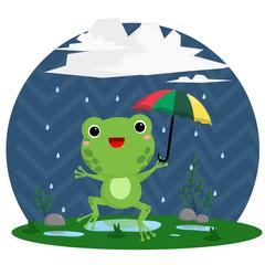 Rain and frog