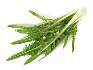 Löwenzahn - Gemüse