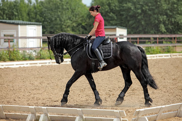 Young dressage rider on black friesian horse