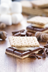 Chocolate and Graham Crackers Smores