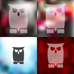 owl icon on blurred background