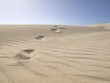 Dunes at Ceduna, Nullarbor, Western Australiaia