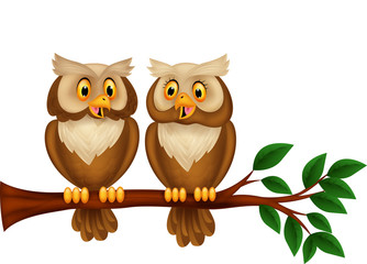 Cartoon couple owl on a branch