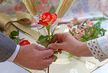 Male and female hand with red rose