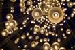 light bulb - 77481555