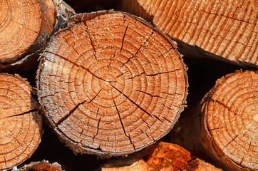 holzscheibe, brennholz