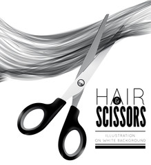 Hair and scissors on a white background