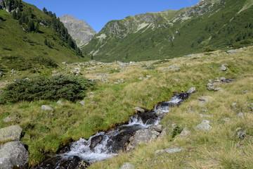 Bach im Mutterbergtal, Stubaier Alpen