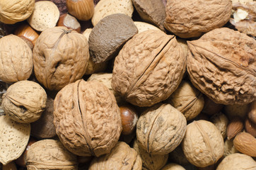 Lots of nuts