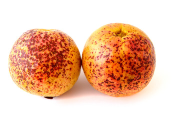 Two ripe guava fruits
