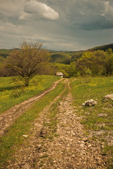 Road to the house. Spring landscape