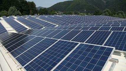 Big solar power station near forest