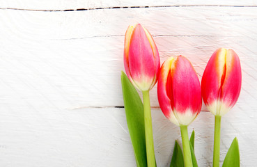 Tulpen auf Holzhintergrund