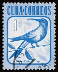 Postage stamp Cuba 1981 Hummingbird, Bird