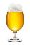 fresh bier