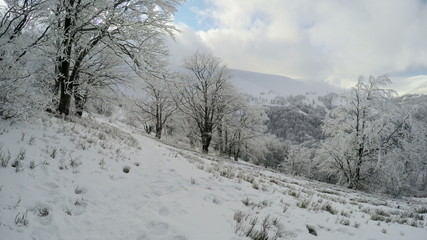 Winter landscape in the mountains, the trees in hoarfrost