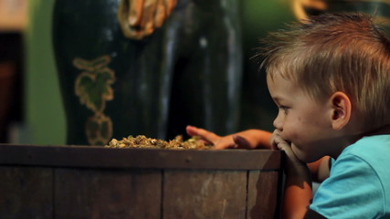 Child boy playing with hops in a museum