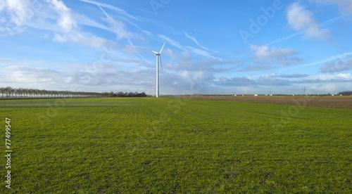 Wind turbine in a meadow
