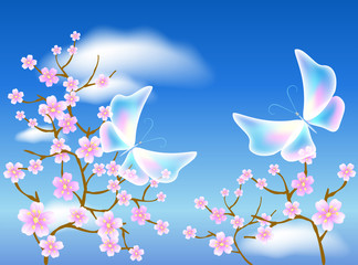 Sakura blossom and transparent butterflies