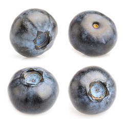 Collage of blueberries on isolated on white background