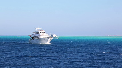 white yacht sailing the red sea - egypt
