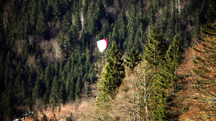 Shot of parachuter flying above forest