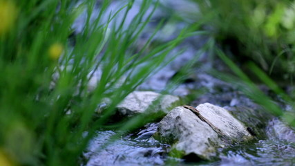 Low angle close up shot water stream in spring
