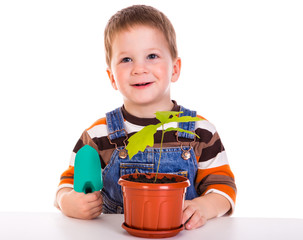 Little boy care plant in a pot
