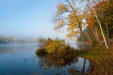 Fog rolls around a lake all morning.
