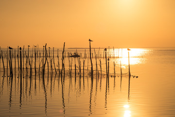 Sunset on Albufera lagoon