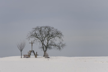 Calvary and trees in winter