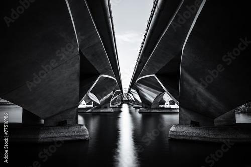 Fotobehang Singapore The Shadow of Under the Esplanade bridge, Merlion park Singapore
