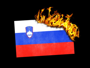 Flag burning - Slovenia