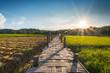Wooded bridge in cornfield between sunset