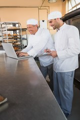 Smiling bakers working together on laptop