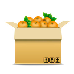 Cardboard box with oranges for sale
