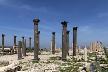 Roman Corinthian columns in Umm Qais-- Jordan