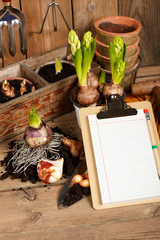 notebook on the background of plants