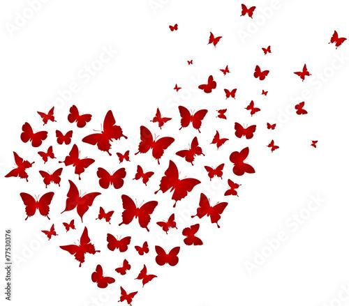 Schmetterlinge Vektor Herz - 77530376