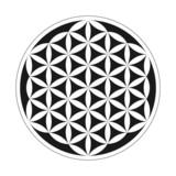 Fototapety Flower of Life - Geometrical Pattern