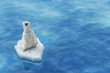 Leinwanddruck Bild - Ours Blanc / Fonte des glaces