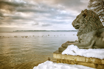 Lions Tutzing