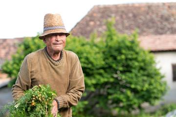 Portrait of a smiling farmer