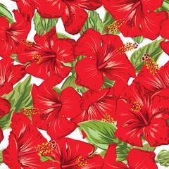 hibiscus tropic pattern